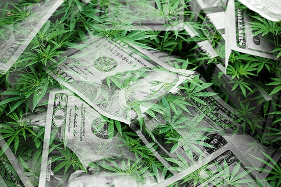Cannabis leaves mixed in with US dollar bills