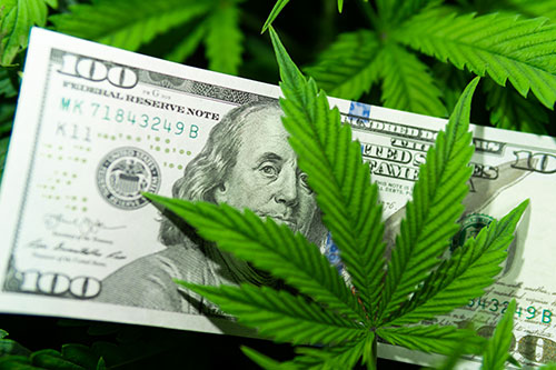 Money with marijuana leaves